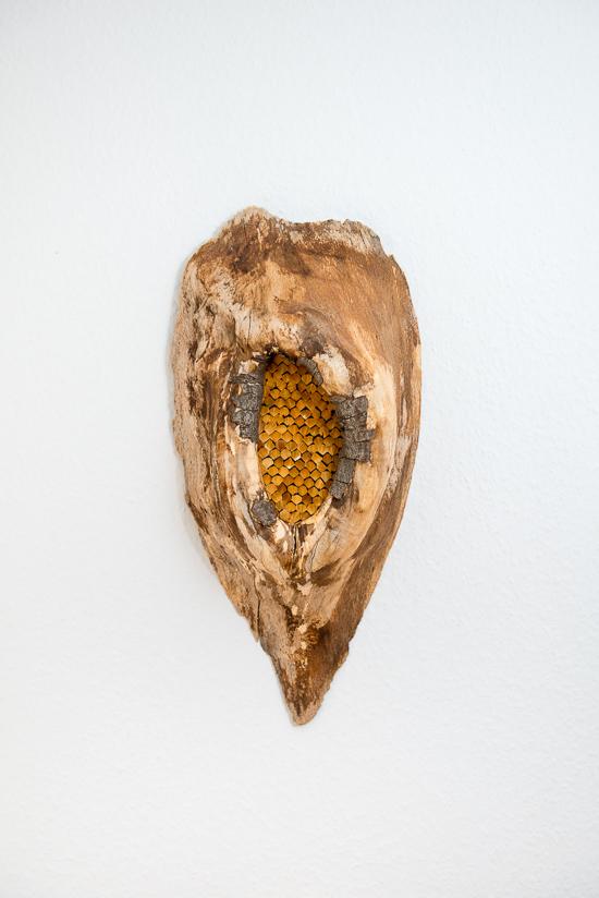 tableau bois et plumes de faisan