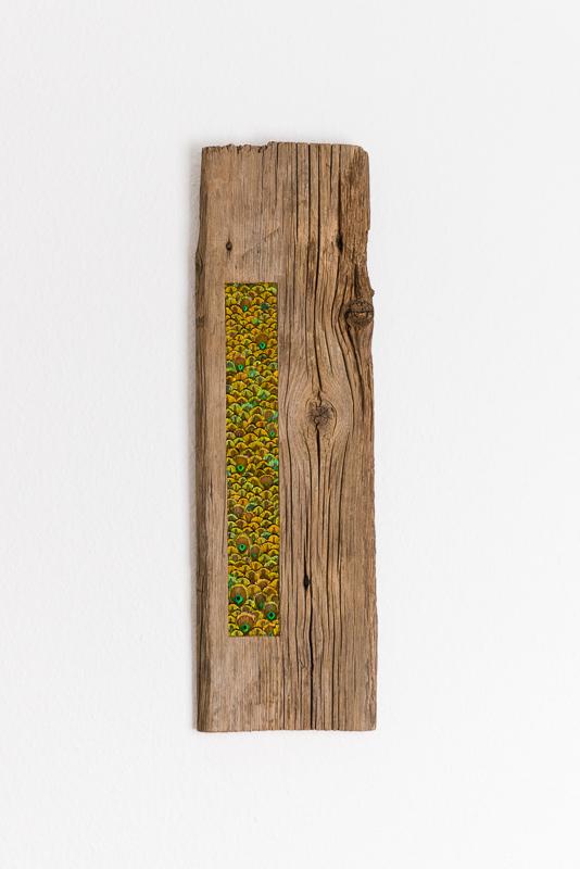 tableau bois et plumes de paon vertes