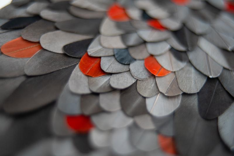 tableau fantômes mosaïque de plumes de perroquet